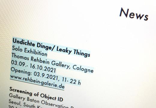 Pauline M'barek  Ausstellung in der Galerie Thomas Rehbein  Köln